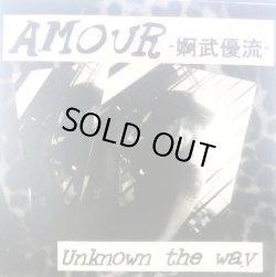 画像1: AMOUR-Unknown the way-CDR(japan)